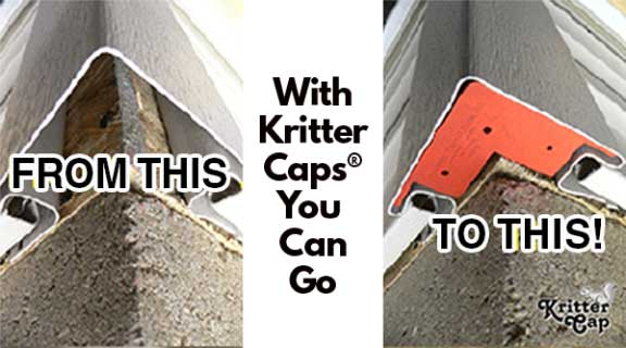 Kritter Cap Stop Mice In The Attic Kritter Cap Keep