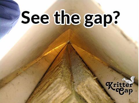 See-the-gap